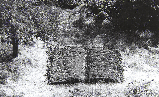 Libro campo (Field Book), 1998, photomechanical print on paper (photo of installation in Bassano in Teverino, Italy), 15 3/4  x 21 5/8 in. (40.01  x 54.93 cm). Pomona College Collection. Gift of the artist.