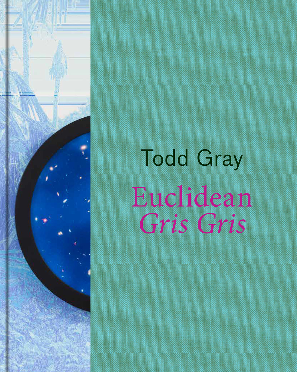 Book cover Todd Gray: Euclidean Gris Gris with image of framed work and green segment
