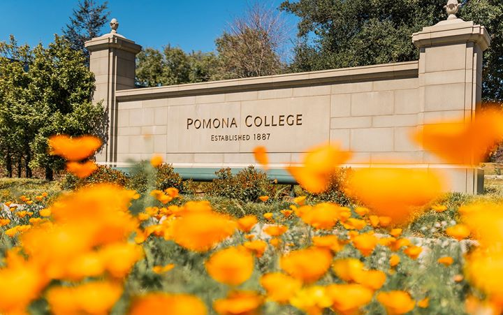 Yeah, we've heard of the super bloom... but have you heard of the Pomona bloom?
