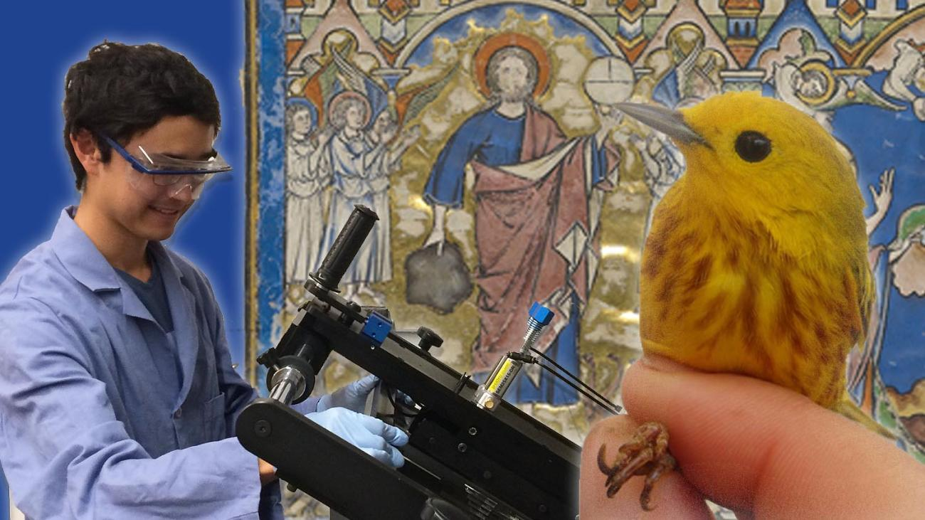 A boy with lab equipement, a yellow bird and the Morgan Crusader bible in the background