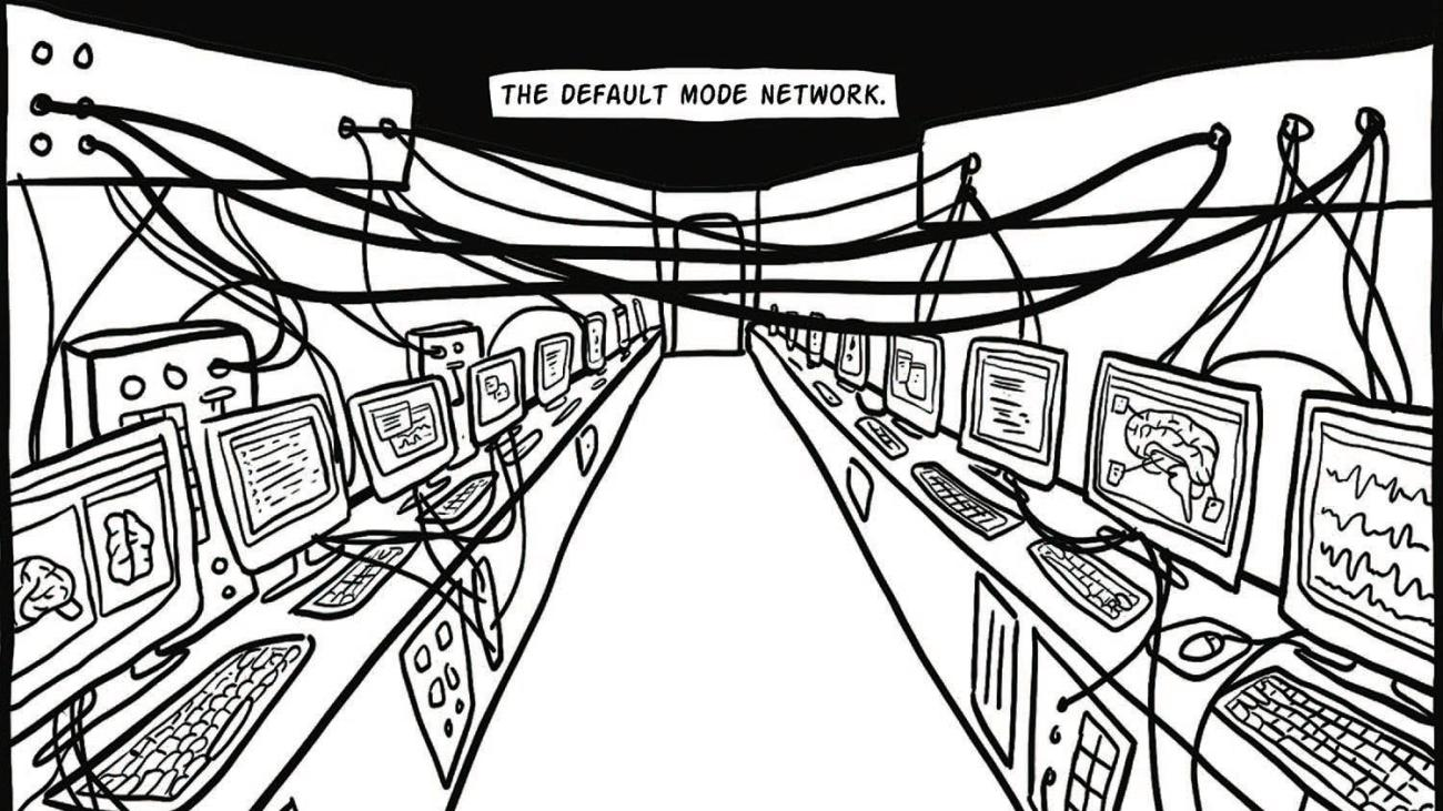 default mode network, illustration